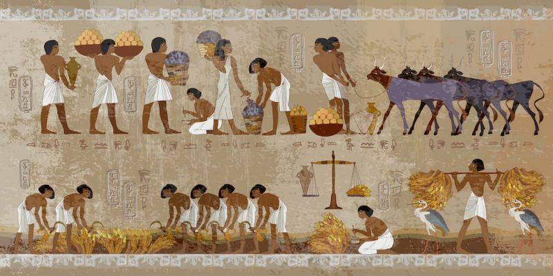 Primeras civilizaciones agrícolas egipto